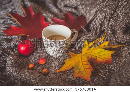 Still life with cup of coffee and dry leaves on a cozy blanket