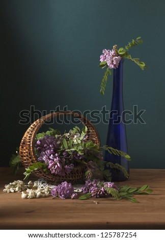 still life with flowers of acacia - stock photo