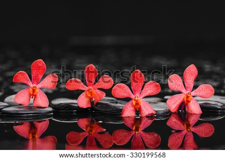 Still life with four orchid with therapy stones  - stock photo