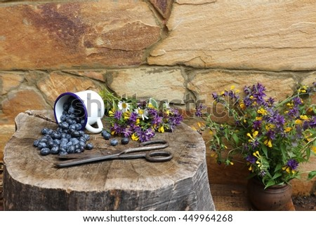 Still life with fresh blueberries in vintage white enamel cup, mug, bunch of wildflowers, bouquet in clay ceramic pot, jag on stamp on natural sand wall background. Outdoor and space, summer day - stock photo