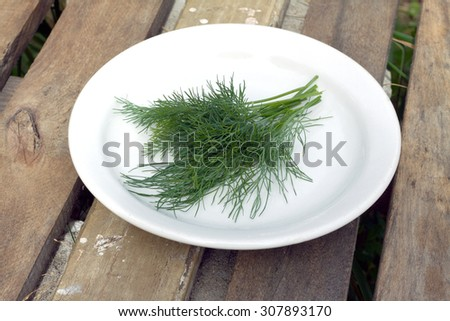 Still life with fresh green dill lying on white plate  closeup - stock photo