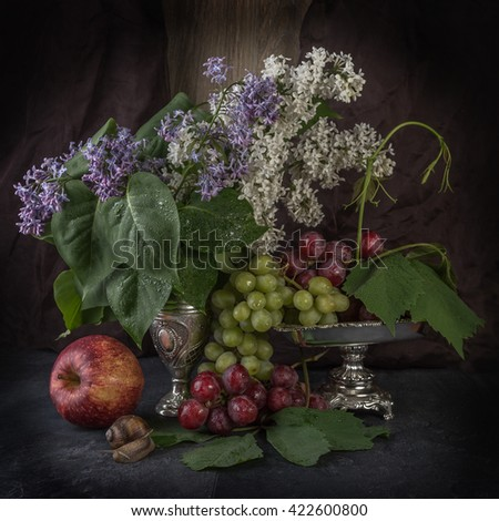 still life with grape, apple and snail - stock photo