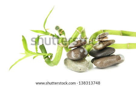Still life with green bamboo plant and stones, isolated on white