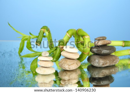 Still life with green bamboo plant and stones, on blue background - stock photo