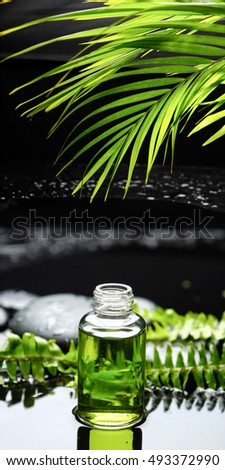 Still life with green leaf with lotion,fern,palm