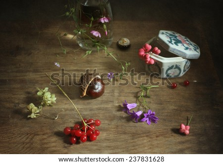 Still life with little fllowers and berries - stock photo