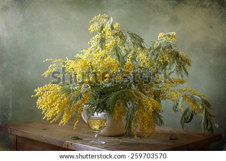 Still life with mimosa - stock photo
