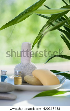 still life with nature spa items - stock photo