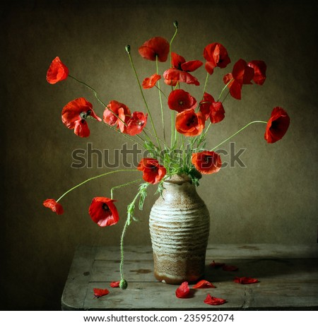 Still life with poppies - stock photo