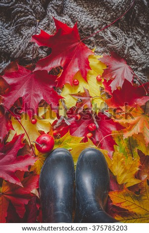 Still life with rainy boots, colorful dry leaves and small red apples
