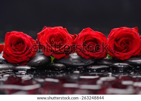 Still life with red rose and therapy stones - stock photo