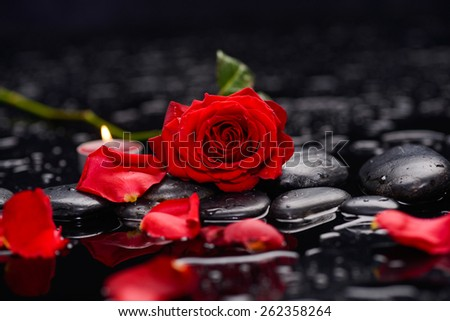 Still life with Red rose ,candle and wet stones - stock photo