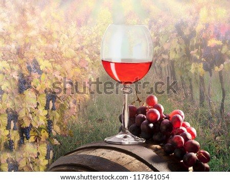 still life with red wine on vineyard - stock photo