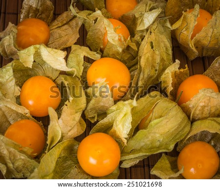 Still Life with ripe juicy physalis with leaves - stock photo