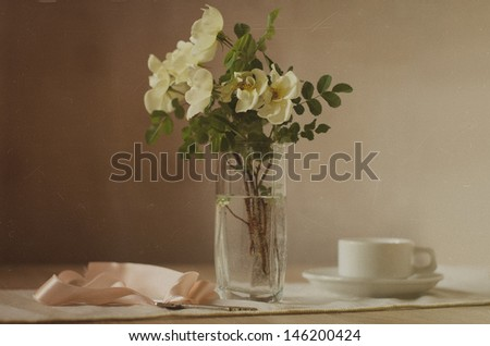 Still Life with Rose - stock photo