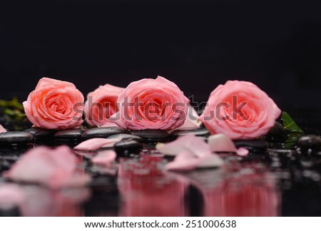 Still life with rose and therapy stones - stock photo