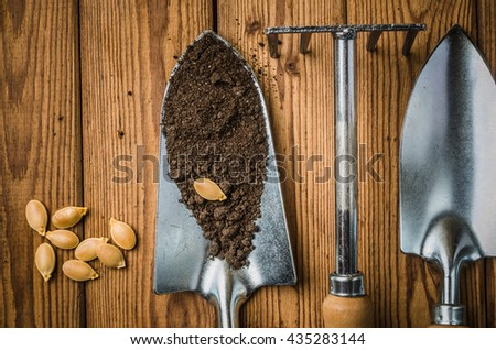 Still-life with seeds and the garden tool, top view - stock photo