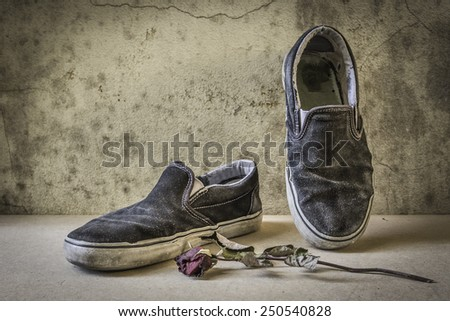 still life with shoe old and rose dry - stock photo