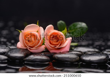 Still life with two orange rose and wet stones - stock photo