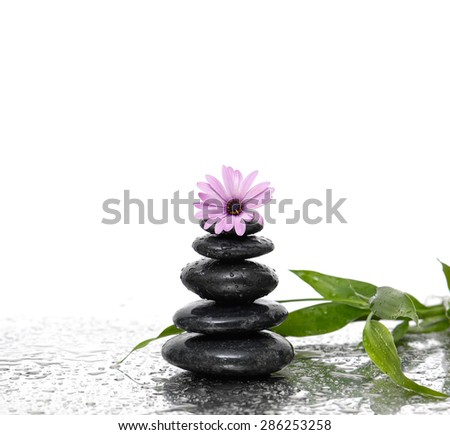 Still life with wet stacked stones with pink flower and bamboo - stock photo