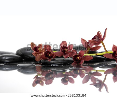 Still life with wet stones with branch red orchid  - stock photo