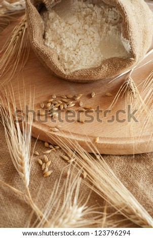Still life with Wheat & Meal - stock photo