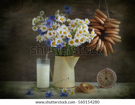 still life with white daisies