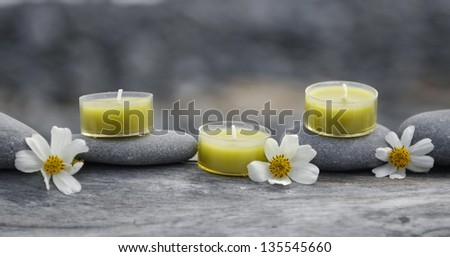 Still life with white flower with candle ,stones on driftwood texture
