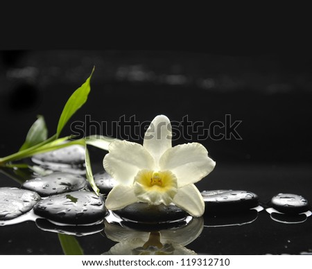 Still life with white orchid and bamboo on black stones - stock photo