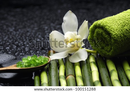 Still life with white orchid and salt in spoon on bamboo grove