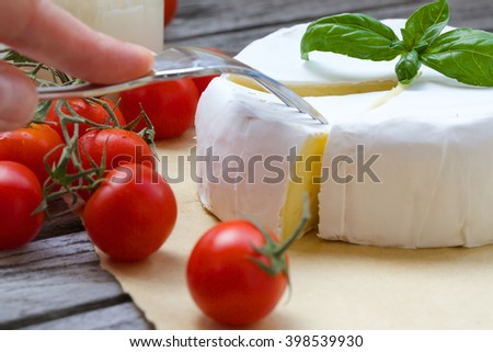 Stinky French cheese, fresh basil leaves, milk,cherry tomatoes,old knife on a distressed wooden surface. Closeup