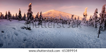 Stitched Panorama, winter sunrise in the mountains. czech republic - stock photo