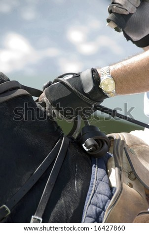 Stock photo of a man's gloved hand holding the reins of a polo pony. He has a gold watch on the hand that holds his riding crop and his other hand is holding his mallet. - stock photo