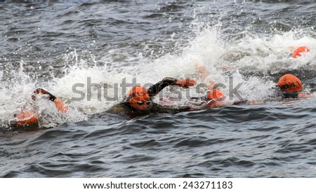 STOCKHOLM - AUG 23, 2014: Lots of female triathletes swimming in a chaotic scene in the Woman's ITU World Triathlon series event Aug 23, 2014 in Stockholm, Sweden