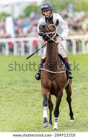 STOCKHOLM - JUNE 6: Closeup of jockey and horse at Nationaldags Galoppen in Gardet. June 6, 2015 in Stockholm, Sweden. - stock photo