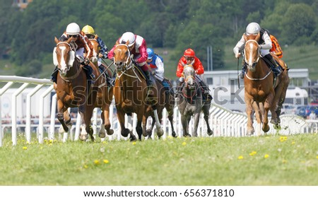 STOCKHOLM, SWEDEN - JUNE 06, 2017: Tough fight between the jockeys riding race horses at Nationaldags Galoppen at Gardet. June 6, 2017 in Stockholm, Sweden