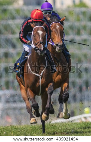 STOCKHOLM, SWEDEN - JUNE 6, 2016: Two race horses and jockeys in closeup at the Nationaldags Galoppen at Gardet. - stock photo