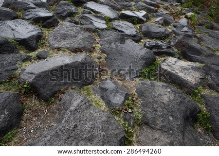 Stone and Moss for background and texture