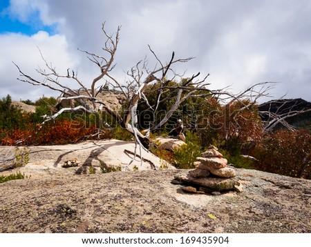Stone and wood sculptures on a granite plateau on Mt Buffalo, Victoria, Australia - stock photo