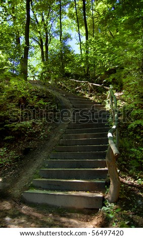 Stone and wood stairway leading up a hill in a park, summer, daytime.