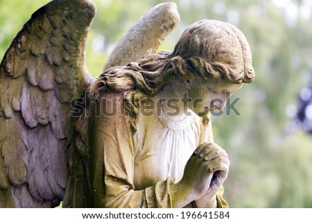 Stone angel in colour - stock photo