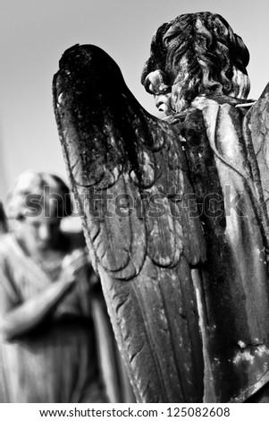 stone angels - stock photo