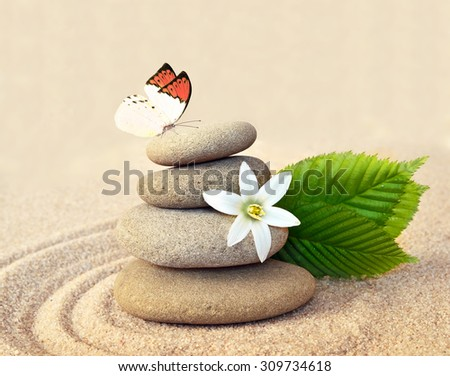 Stone balance , butterfly and flower - stock photo