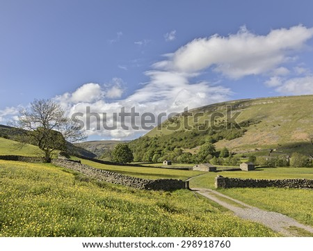 Stone barns and hay meadows at Muker, Swaledale, blue sky - stock photo