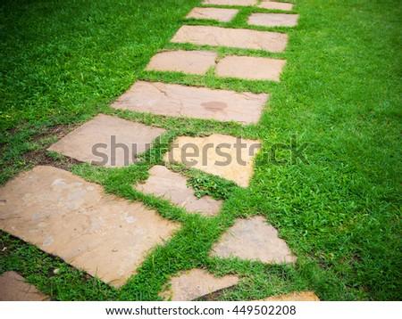Garden Stone Path Grass Growing Between Stock Photo