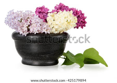 Stone bowl with a bouquet of colored lilac spring flowers on white background - stock photo