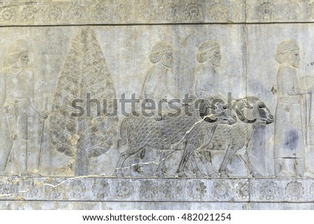 Stone carved reliefs of ancient ruin city of Persepolis near Shiraz Iran