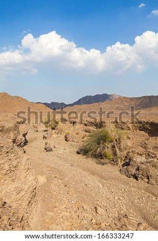 Stone desert between the UAE and Oman