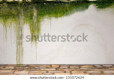 Stone floor and mossy plaster wall - stock photo