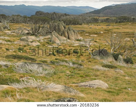 Stone formations in alpine meadow - stock photo